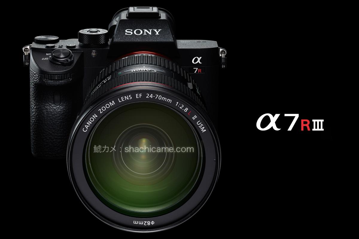 Sony α7R III (ILCE-7RM3) + MC-11 + EF24-70mm F2.8L II USM