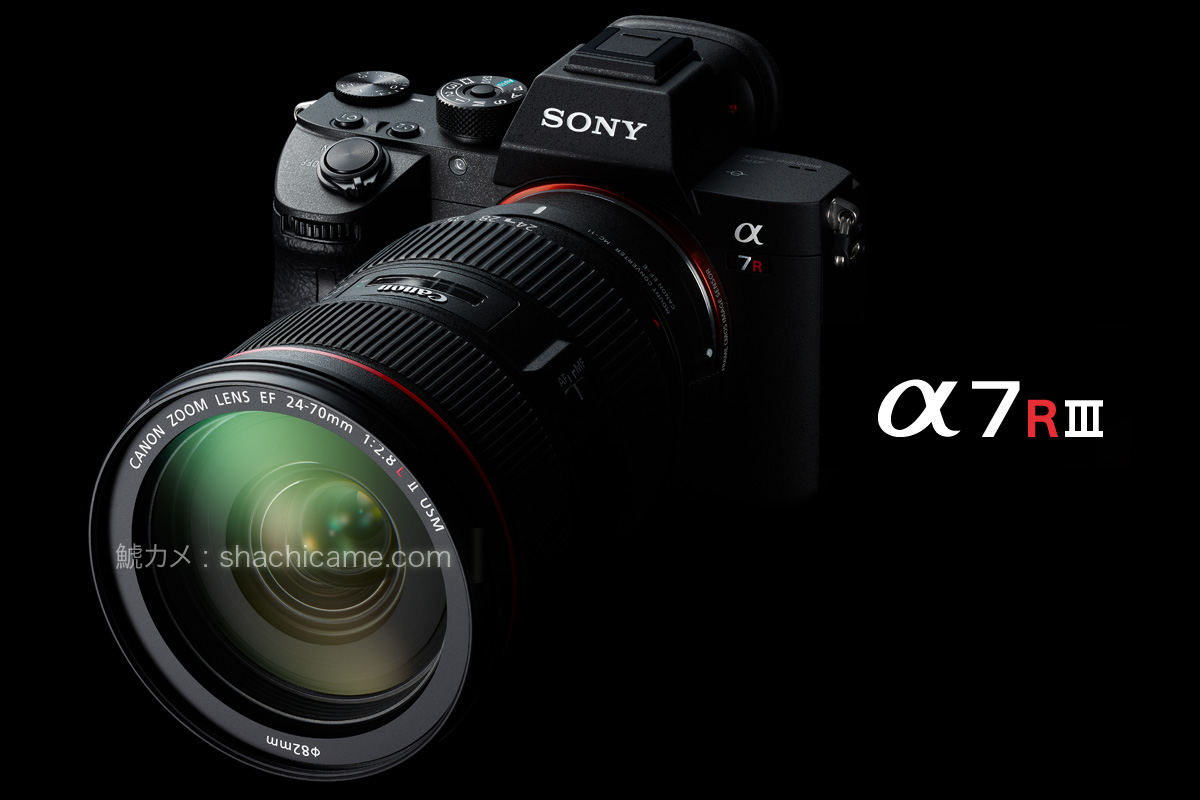 Sony α7R III (ILCE-7RM3) + SIGMA MC-11 + Canon EF24-70mm F2.8L II USM(非公式)