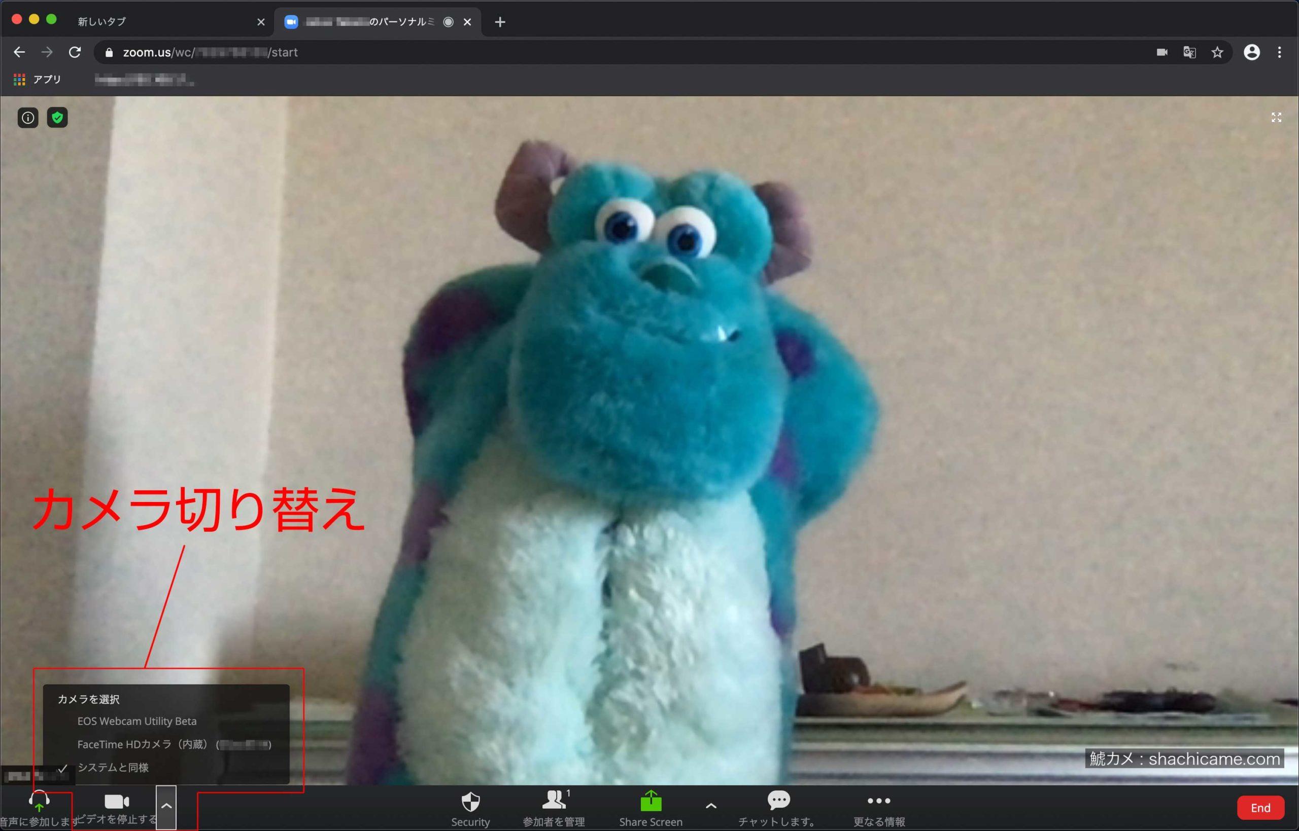 Canon EOS WEBCAM UTILITY beta Zoom 01