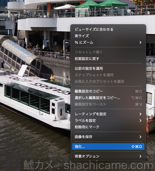 Adobe Camera RAW 強化 スーパー解像度 04
